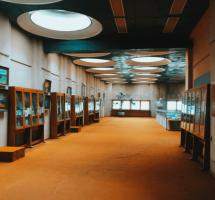 выставочный зал библиотека вернадского