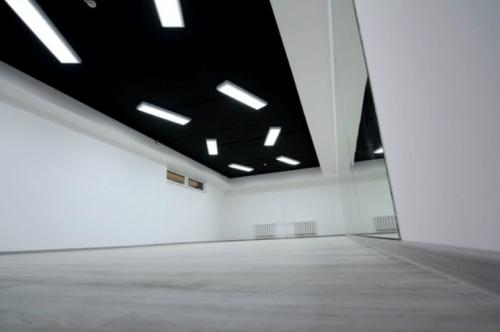 Evolution Dance Centre - 2 больших танцевальных зала • 2021 • RoomRoom 4